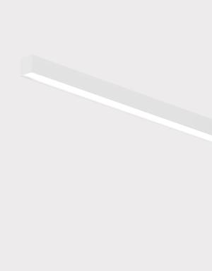 Corpuri de iluminat aplicate pe tavan